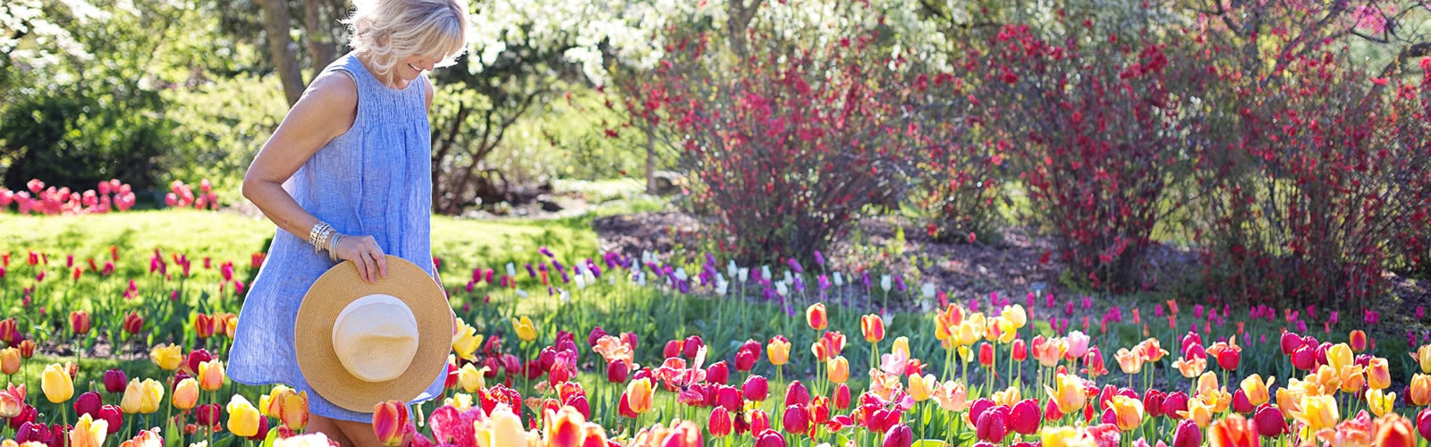 Dein Garten-Paradies